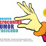 logo_microcontos 2013